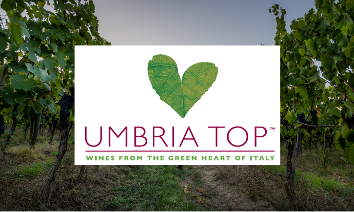 Umbria Top Wines